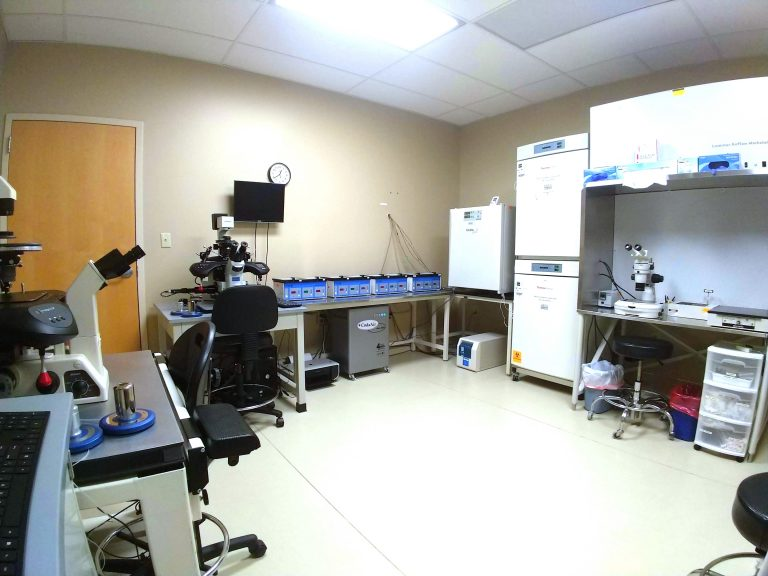 Embryology Laboratory